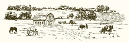 milker: Cows and horses grazing on meadow. Hand drawn illustration.