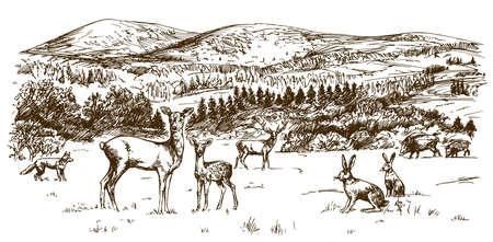 Waldlandschaft, Wald mit Hirschen. Hand gezeichnet Illustration Illustration