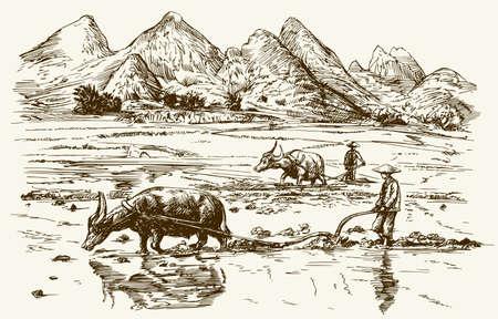 Asiatische Landwirte arbeiten auf Reisfeld. Hand gezeichnet Illustration.