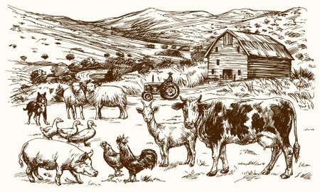 Nutztiere. Hand gezeichnet Vektor-Illustration.
