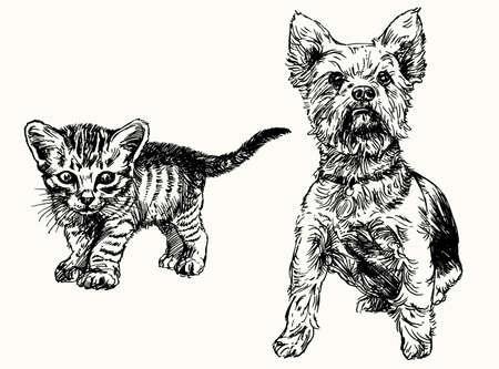 Hand gezeichnet Kätzchen und Yorkshire-Terrier. Illustration