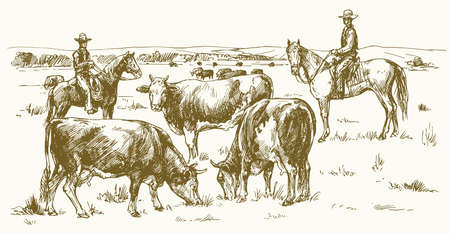 Cattle drive by two cowboys. Cows grazing on pasture. Vector illustration. Stock Illustratie