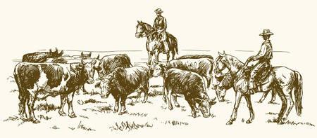 二人のカウボーイ、手描きのベクトル図で牛ドライブ。