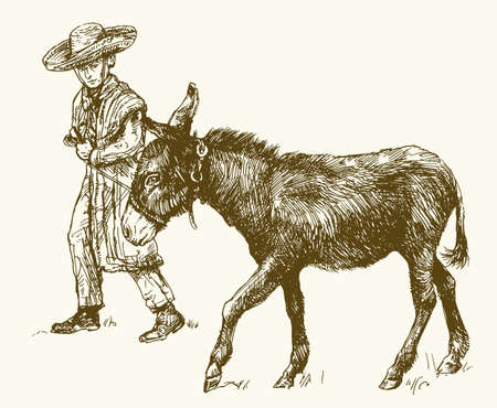Donkey with boy. Hand drawn vector illustration.