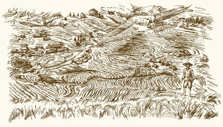 Rice terraces of Longsheng. Hand drawn illustration.