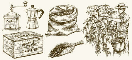 Farmer picking coffee beans. Canvas bag and scoop, grinder. Hand drawn set.
