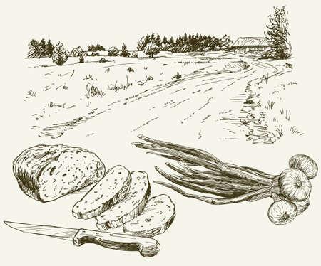 Brot und Zwiebel Landschaft auf dem Hintergrund. Illustration