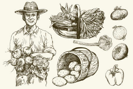 Gardener, basket of harvested vegetables. Hand drawn illustration. Imagens - 85860696