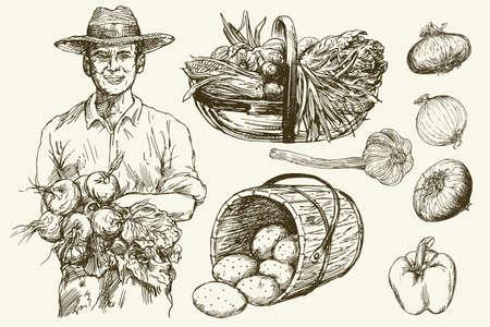 Gardener, basket of harvested vegetables. Hand drawn illustration.