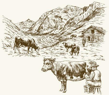 방목하는 소의 무리, 암소를 짜는 농부.