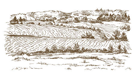 Agricultural landscape in hand drawn, sketched illustration.
