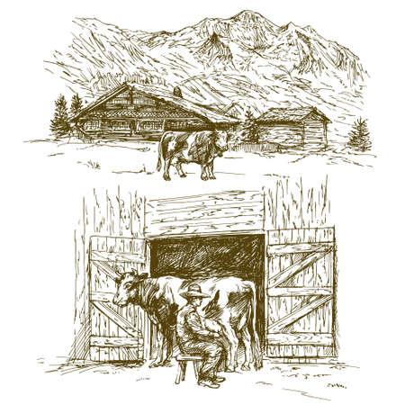 牛の放牧、農家は牛を搾乳。  イラスト・ベクター素材