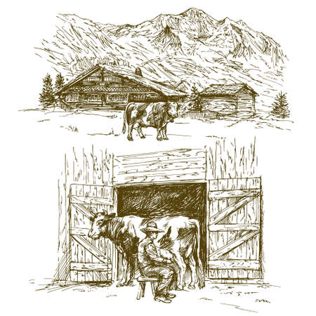 Cow grazing, farmer milking a cow.