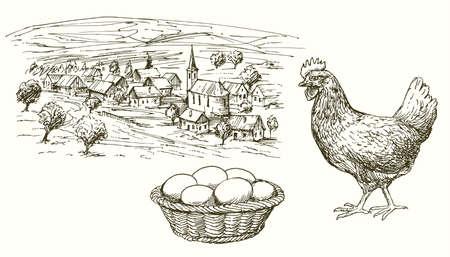 Gallina, pollo, huevos en la cesta, pueblo rural. Foto de archivo - 97786150