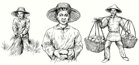 Los agricultores asiáticos cosechan papas y arroz. Conjunto dibujado a mano.