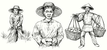 Azjatyccy rolnicy zbierają ziemniaki i ryż. Ręcznie rysowane zestaw.