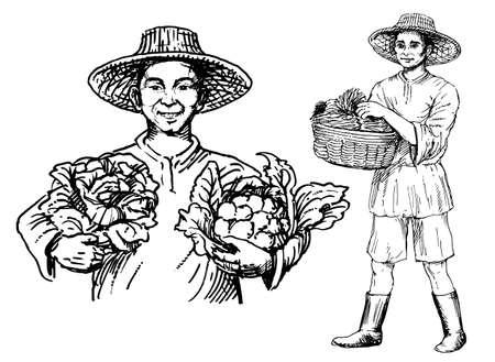 Hommes asiatiques tenant le chou-fleur et un panier de légumes, illustration vectorielle dessinés à la main.