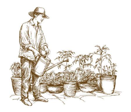 Uomo che innaffia le piante. Illustrazione disegnata a mano.