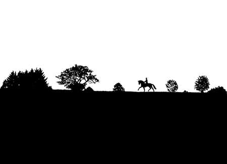 Silhouette of a rider on a horse on meadow.
