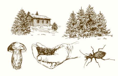 Forest, picking blackberries. Hand drawn set.