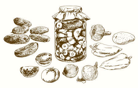 Jar with pickled vegetables. Hand drawn set.