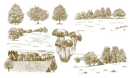 Rural landscape. Hand drawn set.  イラスト・ベクター素材