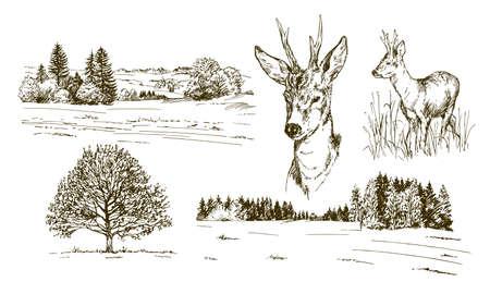 Rural landskape, forest and meadow with deer. Hand drawn set. Vector Illustratie