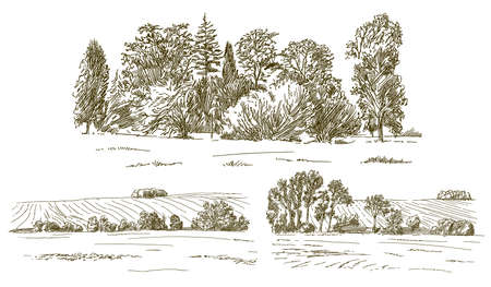 Rural landskape, forest and meadow. Hand drawn set.