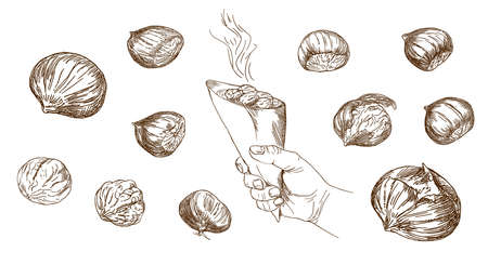 Set of hand drawn illustration. Hand holding grilled whole chestnuts. Ilustrace