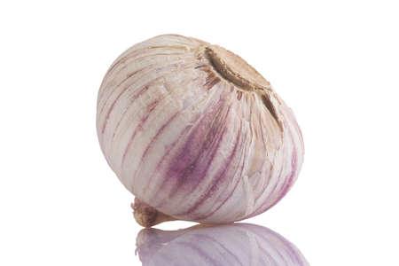 garlic, close up studio shot, isolate photo