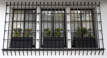 Cell mates plants behind bars in centenary building Stock Photo - 18359161