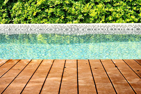 Dirty wooden ground with swimming pool and tree fence