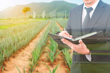 Double exposure of usinessman writing notebook and blurred farm agriculture Stock Photo