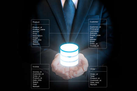 Professional businessman connecting network and database on hands in technology and business concept Stock Photo