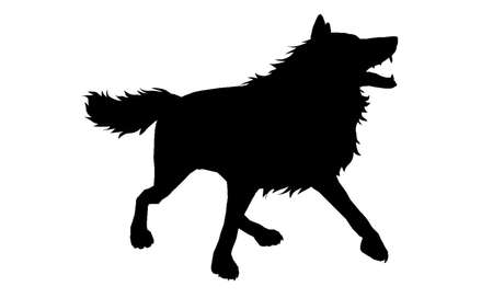 Wolf Silhouette 2