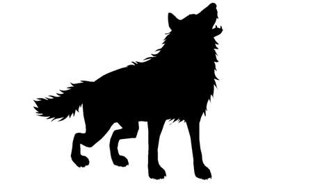 Wolf Silhouette 3