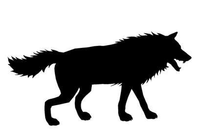 samoyed: Wolf Silhouette 4 Illustration