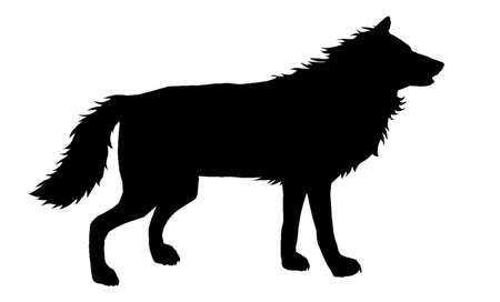 Wolf Silhouette 5 Vettoriali