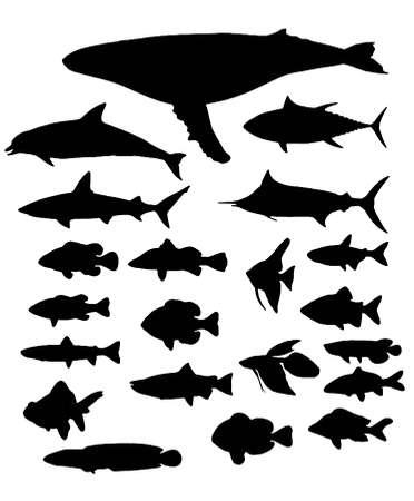 Silhouette de poissons Banque d'images - 76364969