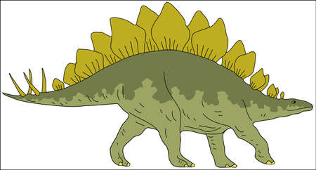 Stegosaur Drawing Illustration