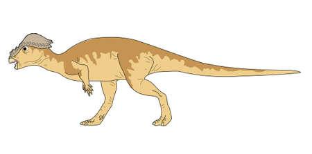 Pachycephalosaurus afbeeldingstekening Stock Illustratie