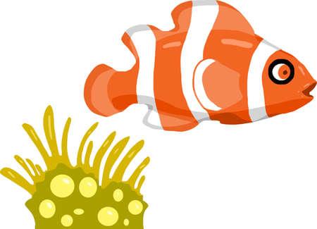 Illustration clown fish Illustration