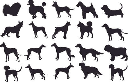 Silhouette Dog Set, Various Dog, Pet, Hound, Guard ,  Animal - Vector Illustration