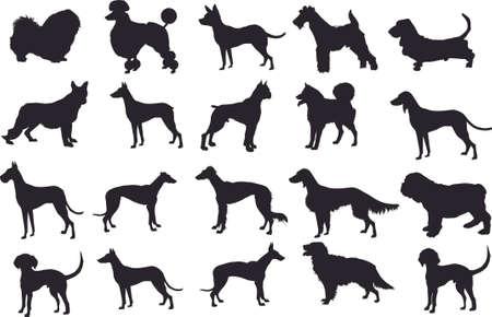 Silhouette Dog Set, Various Dog, Pet, Hound, Guard ,  Animal - Vector Illustration