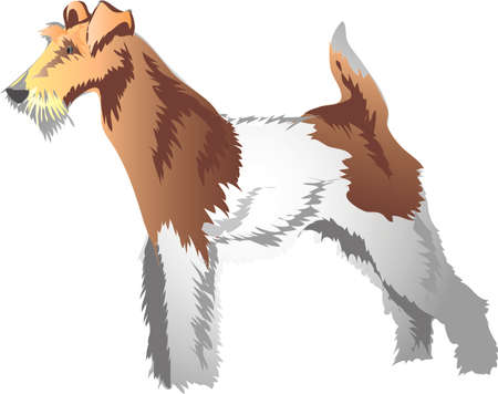 Fox terrier , Fox Hunter Dog - Vector Illustration Ilustração