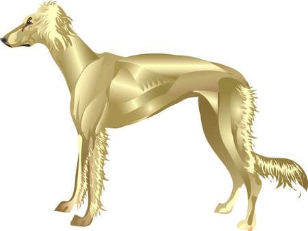 Saluki Hounf, Arab Desert Hunting Dog , Pet Animal - Vector Illustration Illustration