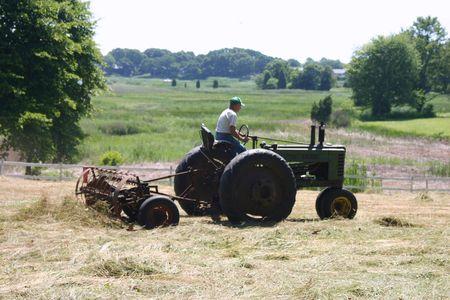 Cutting Hay 3