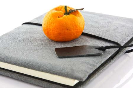 diary book and orange Stock Photo - 13888830