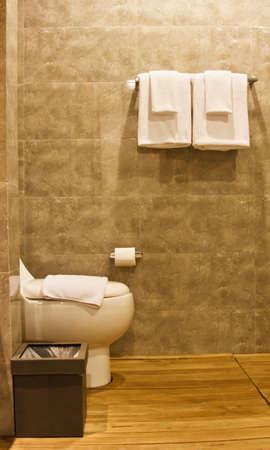 Toilet in the modern bathroom Stock Photo - 16687487