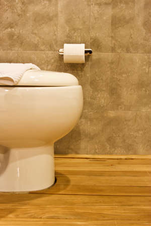 Toilet in the modern bathroom Stock Photo - 16687492